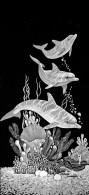 dolphin-fundraising-rosen-cundiff-14
