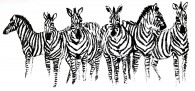 zebras-fundraising-book-rosen-cundiff-art